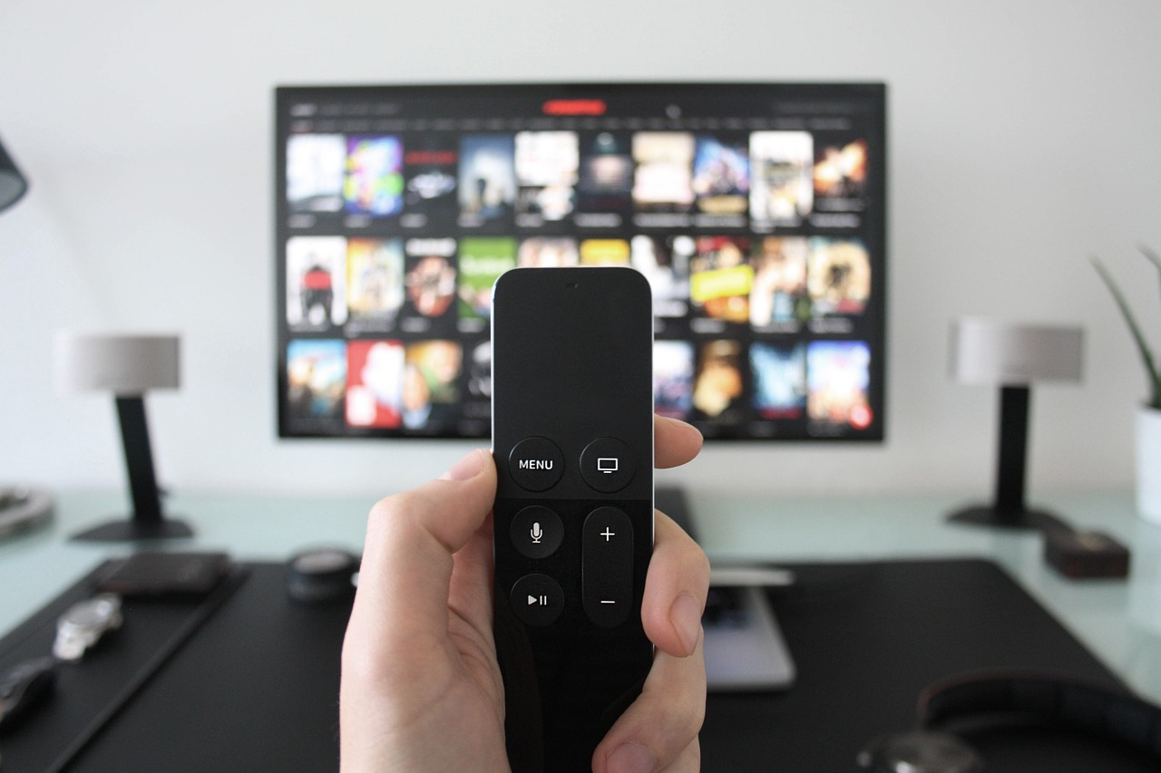 <h3>Universal Remote Control: The Gateway to enjoying your Home Entertainment.. easily!</h3>